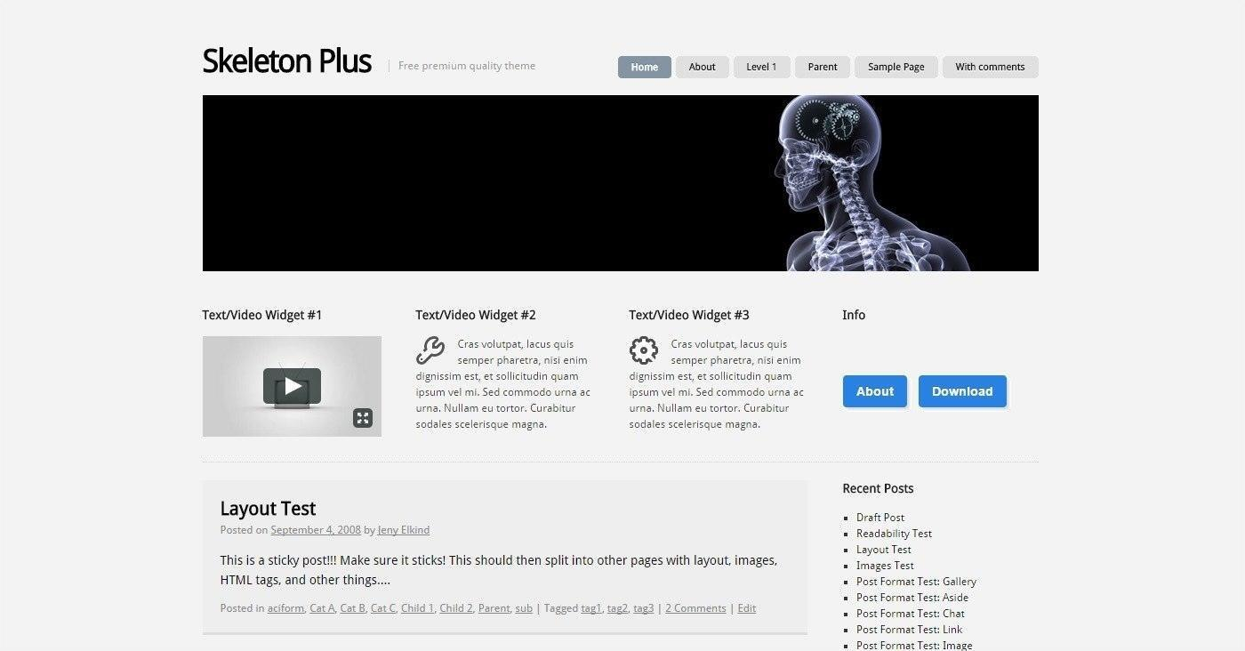 WordPress Theme – Skeleton plus